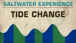 Fishing the Tide Change