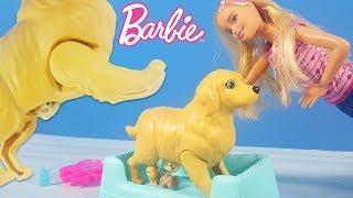 Video Barbie Yeni Doğum Yapan Köpek | Yeni Barbie Oyuncak Videoları | Evcilik TV MP3, 3GP, MP4, WEBM, AVI, FLV November 2017