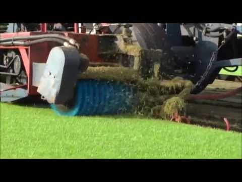 Schälung vom Rollrasen - Rasenprofi zeigt wie