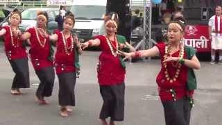 Video Rodhi Dance - Nepali Mela UK 2015- Sonpal Samaj UK MP3, 3GP, MP4, WEBM, AVI, FLV September 2018