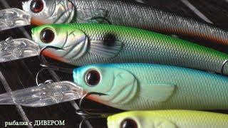 Производитель этих приманок Питерская компания JSpin. Некоторые из них я могу назвать уникальными! Цена этих приманок, на сегодняшней день, 300 - 400р, эти приманки можно использовать для ловли в заброс и при ловли троллингом. Обзоры дивера. Воблер танцор, воблер щурёнок, воблер пескарь, воблер подустгде можно купить эти приманки - http://www.quickfish.ru/voblery/jinspin/ доставка быстрая, фирма принимает претензии по качеству приманок!обзор по воблерам JSpin приманки на окуня, голавля, форельку и щучку. Воблеры по малым рекам https://www.youtube.com/watch?v=nA-2ePlsIJcПодпишитесь на канал! У нас на канале: Как ловить троллингом в один спиннинг, советы бывалых, советы новичкам в рыбалке. Ловля на малых реках хищной рыбы, ловля рыбы на Ахтубе, ловля троллингом, какой воблер купить чтобы не потратить зря деньги. Рыбалка для начинающих. ловля судака, ловля щуки, ловля сома, ловля окуня, ловля голавля, ловля на спиннинг, ловля спиннингом, ловля твичингом, ловля на перекате, ловля на воблеры, ловля троллингом, ловля на дорожку, воблеры на голавля окуня, воблеры на судака, троллинговые воблеры, воблеры для твичинга, воблер на щуку сома судака, как поймать много судака., на что ловить судака сома щуку, Какой воблер купить для троллинга твичинга, троллинга, какие воблеры ловят. Фильмы о рыбалке, фильмы Челышева, рыбалка в россии, обучающий фильм о рыбалке. Воблеры для троллинга на судака. Воблеры для троллинга на сома, щуку. Советы какой воблер купить. Обзоры воблеров, воблеры для твичинга. Ловля спиннингом на малых реках. Рыбалка видео.Отдых на реке, отдых в палатках. Где отдохнуть в России? Где отдохнуть недорого? Где отдохнуть летом? Недорого отдохнуть можно на реках России! База отдыха на реке Ахтуба рыболовная база. Видео рыбалка, рыбалка видео. 40 минут с ДИВЕРОМ теория рыбалки троллингом! Ловля судака на троллинг, ловля щуки на троллинг, ловля сома на троллинг, ловля сома троллингом, ловля судака троллингом, ловля щуки троллингом, Снасти для троллинга, троллинговая л