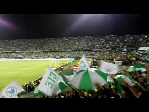 Atlético Nacional Eliminando a gallinarios en Semifinal. - Los del Sur - Atlético Nacional