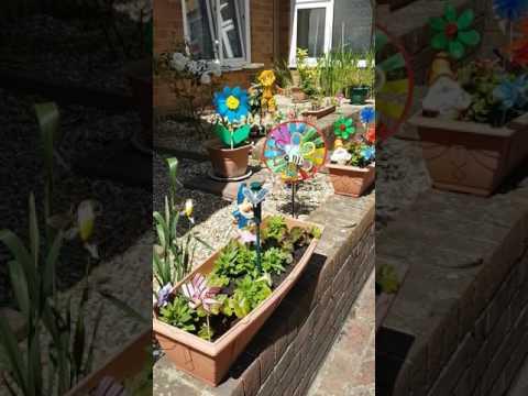 My solar Humming Bird in my garden.
