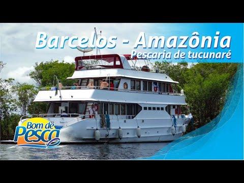 Tucunaré Açu em Barcelos, na Amazônia.