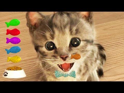 Lindo Gatito   Dibujos Animados Infantiles (Capítulo 3)