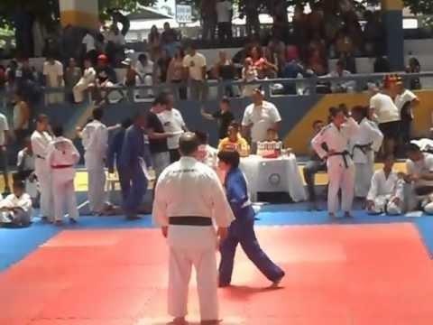 Judo, golpe perfeito