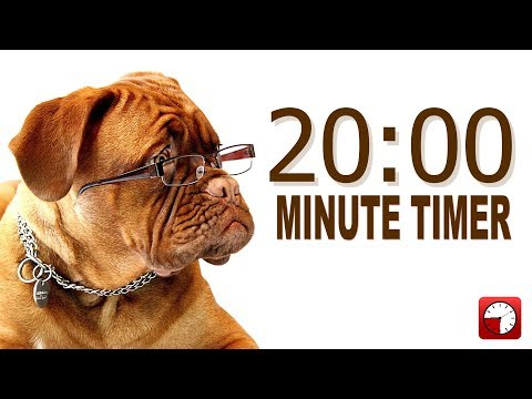 Video 20 Minute Timer for PowerPoint and School - Alarm Sounds with Dog Bark download in MP3, 3GP, MP4, WEBM, AVI, FLV January 2017