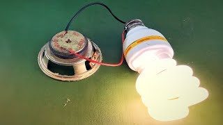 Electric Science Free Energy Using Speaker Magnet 100%