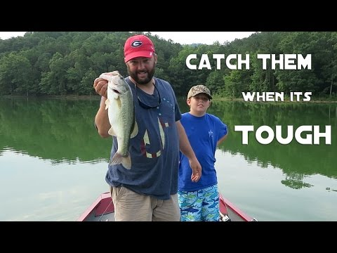 Bass Fishing - Cant Get a Bite? Heres Three Ways To Catch Them_Horg�szat vide�k
