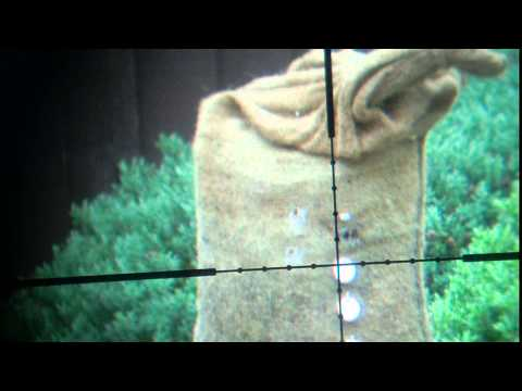 my theoben rapid mk1 shooting chalk targets with scope cam
