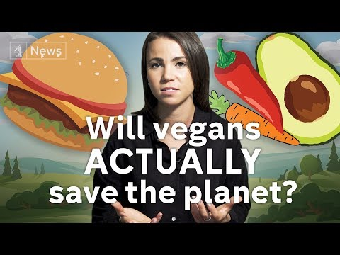 Can going vegan really save the planet?