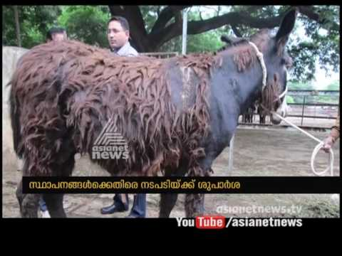 Cruelty to Animals in Laboratories| Asianet News Exclusive