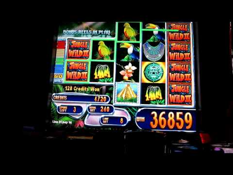 Jungle Wild II Slot Bonus -Max Bet Big Win