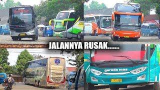 Video BUS BERGOYANG - GOYANG || Terminal Bus Bubulak Bogor MP3, 3GP, MP4, WEBM, AVI, FLV Juli 2018