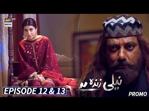 Neeli Zinda Hai Episode 12 & 13 - Promo - ARY Digital Drama