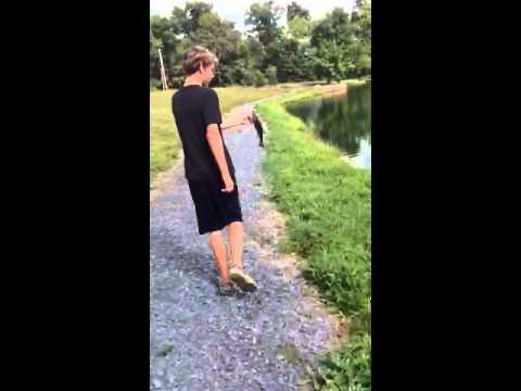 Pond bass fishing pa