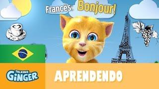 Assista ao vídeo em que o Ginger diz Olá para os fãs em vários idiomas! Aprenda a desenhar o Talking Ginger: https://youtu.be/OhbodCT2aBw Assista ao tutorial...