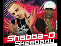 flava 4 rava by the professionals, mc det, mc skibadee, mc shabba.