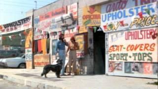 Nonton Up In Smoke   Trailer Film Subtitle Indonesia Streaming Movie Download