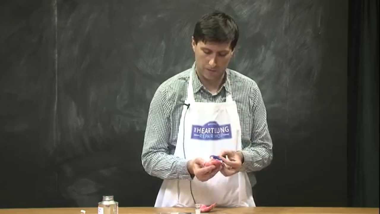 Shop demo - Engineering Heart Valves by Ivan Carubelli