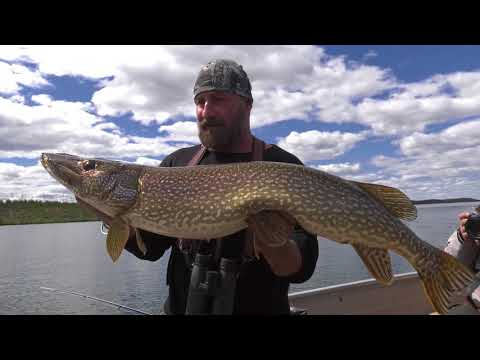 Live the Wild Life - Season 8 - Episode 6 - Exploring Saskatchewan Part 1