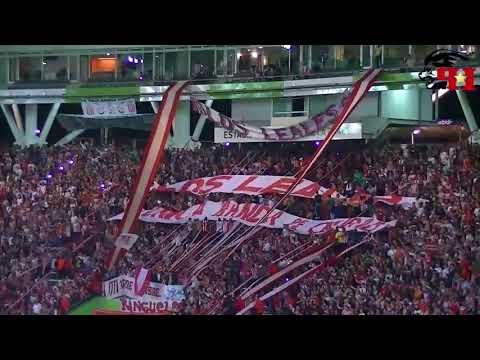 Hinchada - Estudiantes de La Plata 2-1 Arsenal   Fecha 1 - Superliga   INFOPINCHA - Los Leales - Estudiantes de La Plata