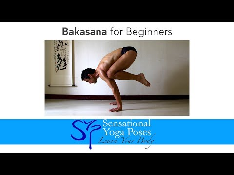 Bakasana for Beginners, Crow Pose Yoga Arm Balance