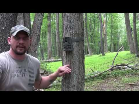 Moultrie A-20i Trail Camera Review