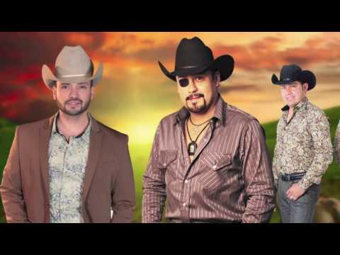Letra Abeja Reina Arnulfo López Jr., Carlos Mora y Los Carnales