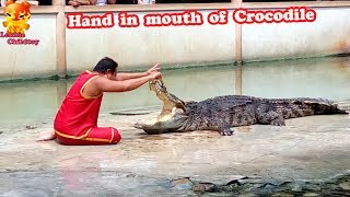 Put his hand to the mouth of the crocodile