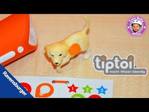 TipToi Tiere Ravensburger Golden Retriever Hunde Welpe Mira - Produktvorstellung Test