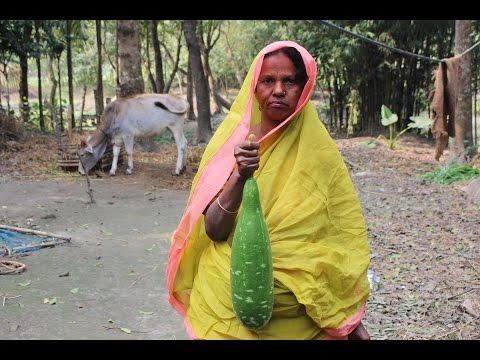 Cooking and recipes | Bottle gourd and fish recipe | Grandmother's recipe-6