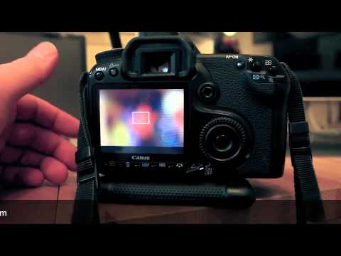 Macro Photography – Extension Tubes Explained