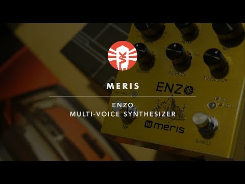 Meris Enzo | Synthesizer Pedal | Vintage King