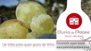 Quinta do Palame, um vinho para quem gosta de vinho