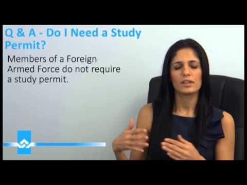 Need a Study Permit Video