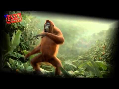 Смотреть онлайн фильмы для андроид за 2015 год