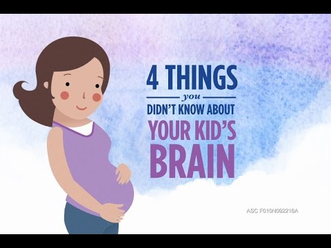 4 Things You Didn't Know about Your Kid's Brain