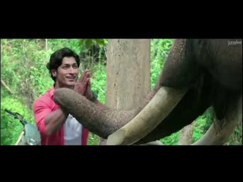 Junglee full movie   junglee movie trailer   nicheya official trailer   vidyut jammwal  