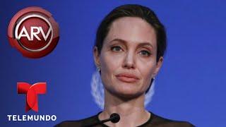 Nonton Arde la batalla legal entre Angelina Jolie y Brad Pitt | Al Rojo Vivo | Telemundo Film Subtitle Indonesia Streaming Movie Download