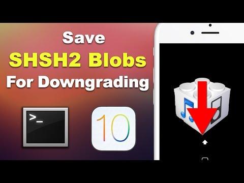 Save iOS 10.3.1 SHSH2 Blobs for Downgrading (3 METHODS - Mac & Windows) | Preserve Your Jailbreak! (видео)