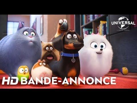Comme Des Bêtes / Bande-annonce officielle 3 VOST [Au cinéma le 27 juillet]