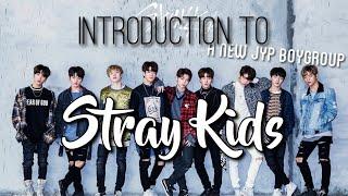 Video Introducing: Stray Kids (Guide) MP3, 3GP, MP4, WEBM, AVI, FLV Maret 2018