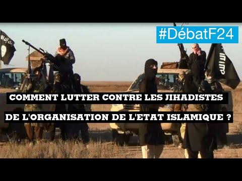 Comment lutter contre l'organisation de l'État islamique ?