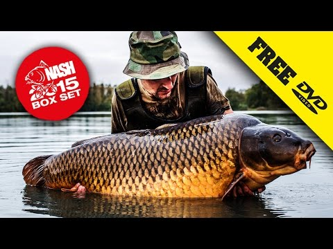 Video NASH 2015 DVD BOX SET Carp Fishing + Subtitles Complete Movie in 1080P download in MP3, 3GP, MP4, WEBM, AVI, FLV January 2017