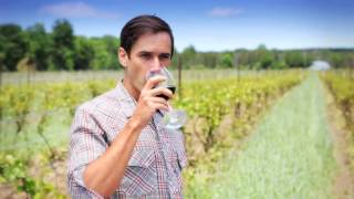 Willow Spring Winery Corporate Video