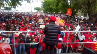EFF MBUYISENI NDLOVU #RACISM MUST FALL SINGING