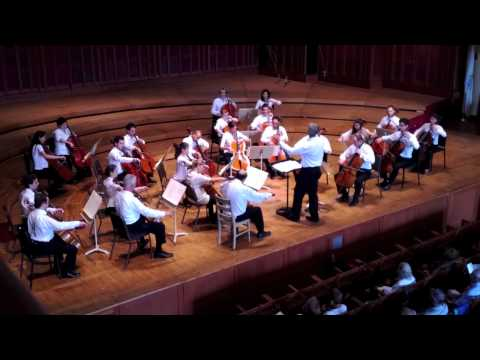 24 Cellists play the Cantique de Jean Racine Op. 11 by Gabriel FAURE