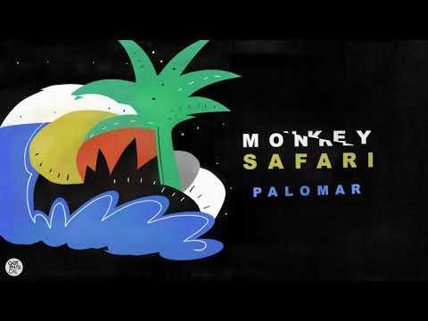 Monkey Safari - Artifact