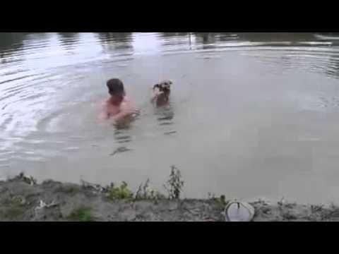 Un hombre se hace el ahogado y su perro reacciona así